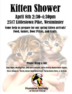 Kitten Shower @ Humane Society of Carroll County | Westminster | Maryland | United States