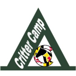 All New Critter Camp Comes to HSCC