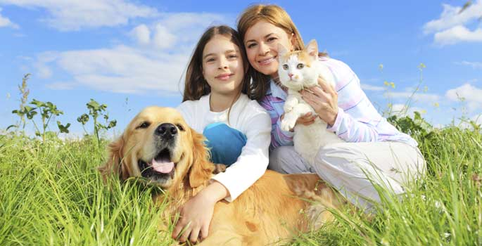 5 Pet Care Tips