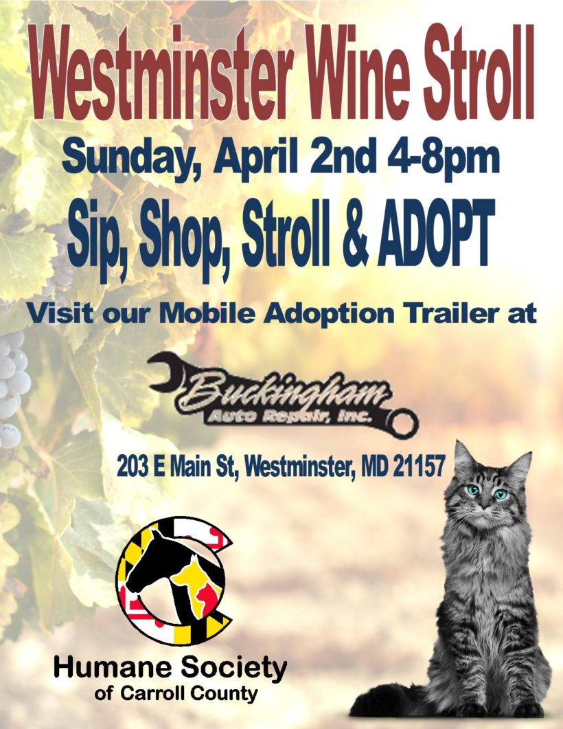 Westminster's Wine Stroll Adoption Event