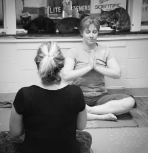 Cat Yoga @ Humane Society of Carroll County | Westminster | Maryland | United States