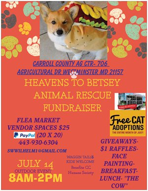 Heavens to Betsey Animal Rescue Fundraiser