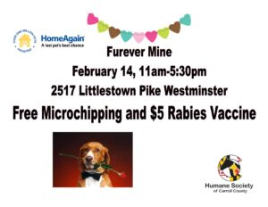 Furever Mine @ Humane Society of Carroll County | Westminster | Maryland | United States