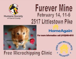 Furever Mine @ Humane Society of Carroll County