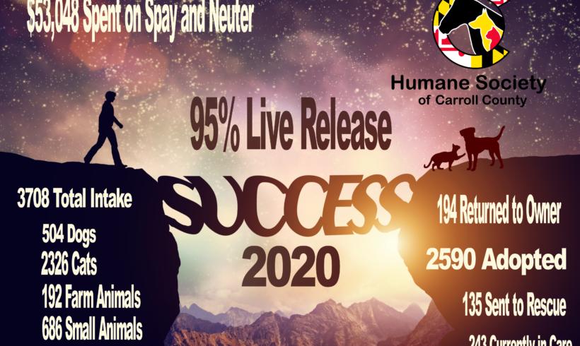 2020 Statistics