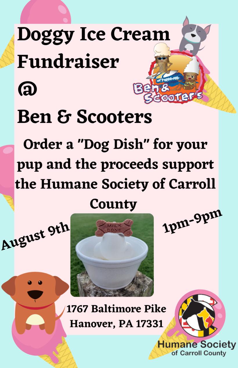 Doggy Ice Cream Fundraiser