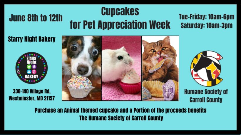 Cupcakes for Pet Appreciation Week!