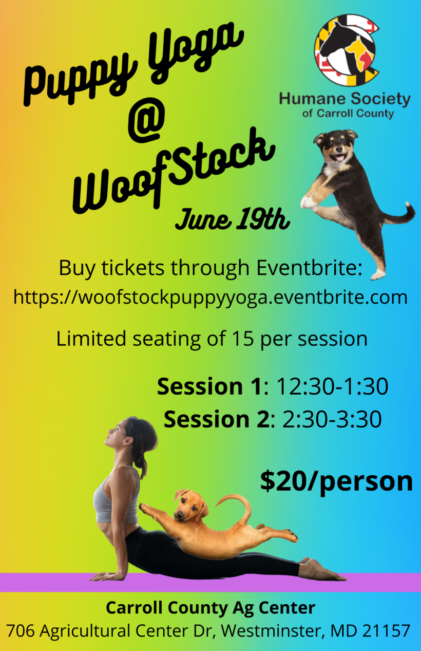 Puppy Yoga @ WoofStock (Session 2)